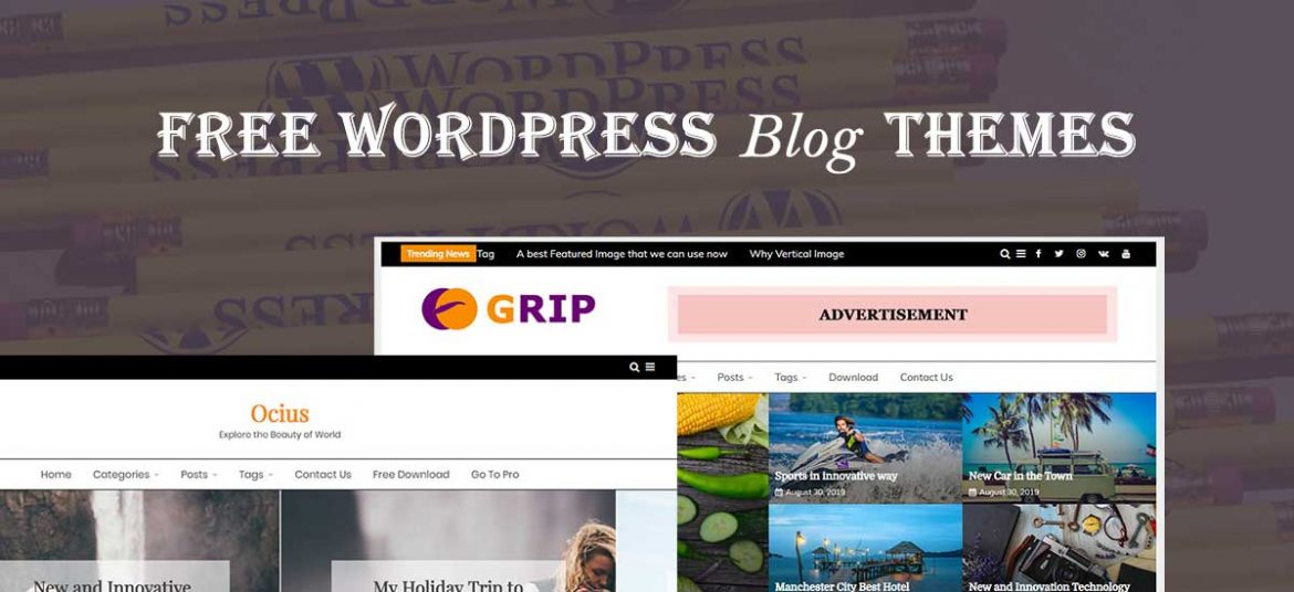10+ Best WordPress Blog Themes for your Website in 2020