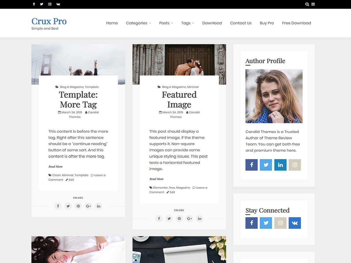 OciusPro – Premium WordPress Theme Two Column