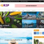 grip best magazine themes